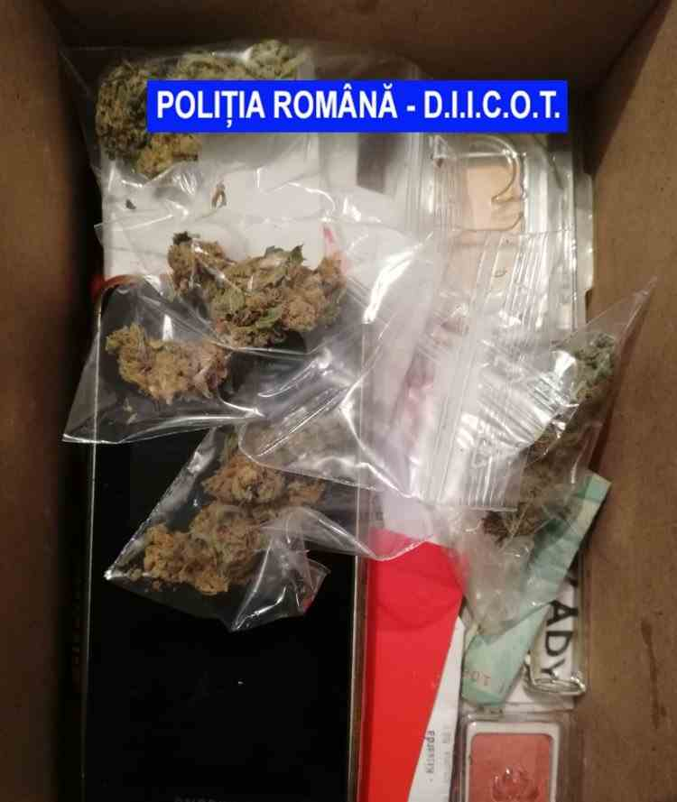 Traficanți de droguri prinși în flagrant - Cocaină și cannabis