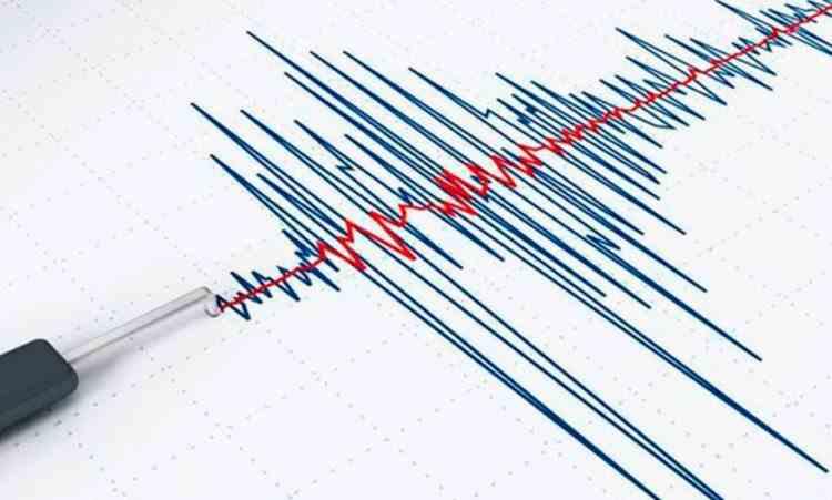 Cutremur cu magnitudinea de 4,5, produs în Vrancea
