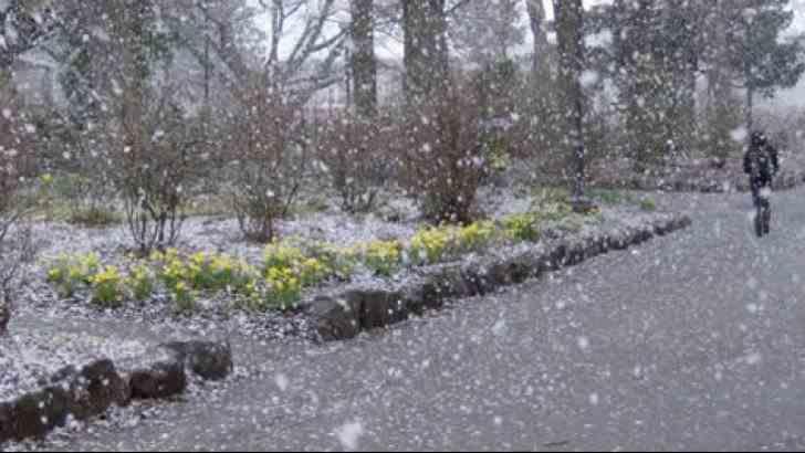 METEO: Vreme severă - vânt puternic, lapoviță și ninsoare
