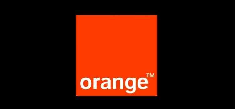 Directorul general Orange - Reţelele de telecomunicaţii pot gestiona creşterea traficului