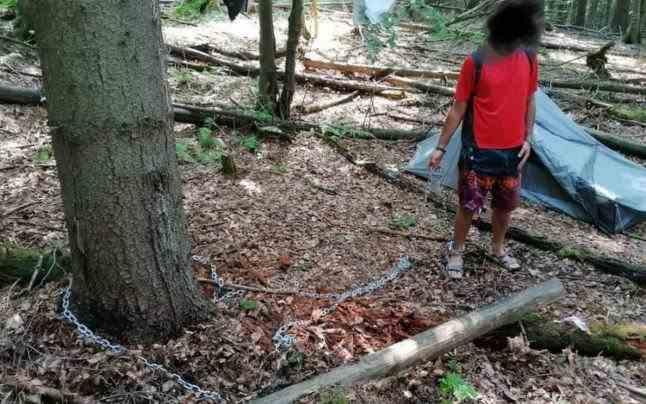 Explicaţia bizară a tânărului găsit legat cu lanţuri, de trei zile, de un copac într-o pădure din Parâng