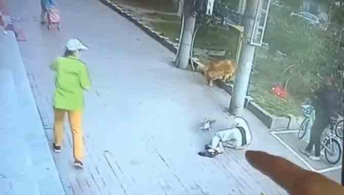 Video inedit: un bărbat a căzut inconștient pe stradă după ce a fost lovit în cap de o pisică picată de la balcon