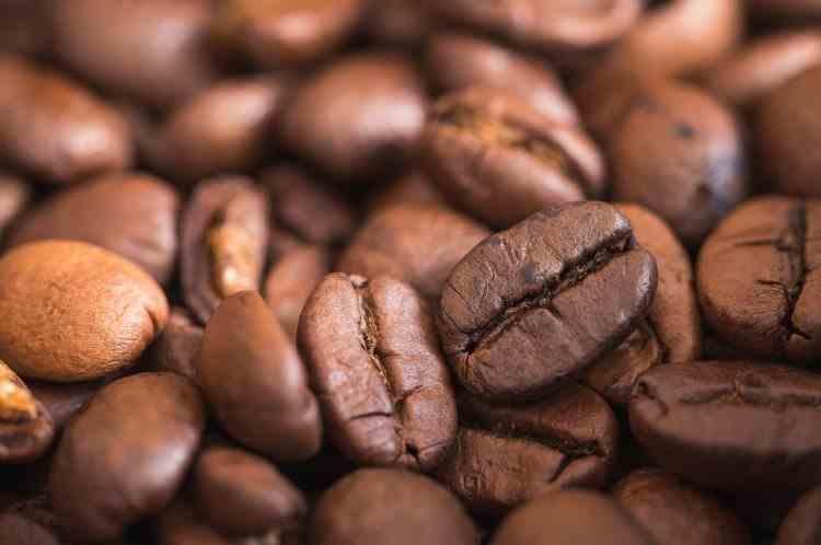 Criza cafelei: Motivul pentru care Omenirea ar putea rămâne fără cafea