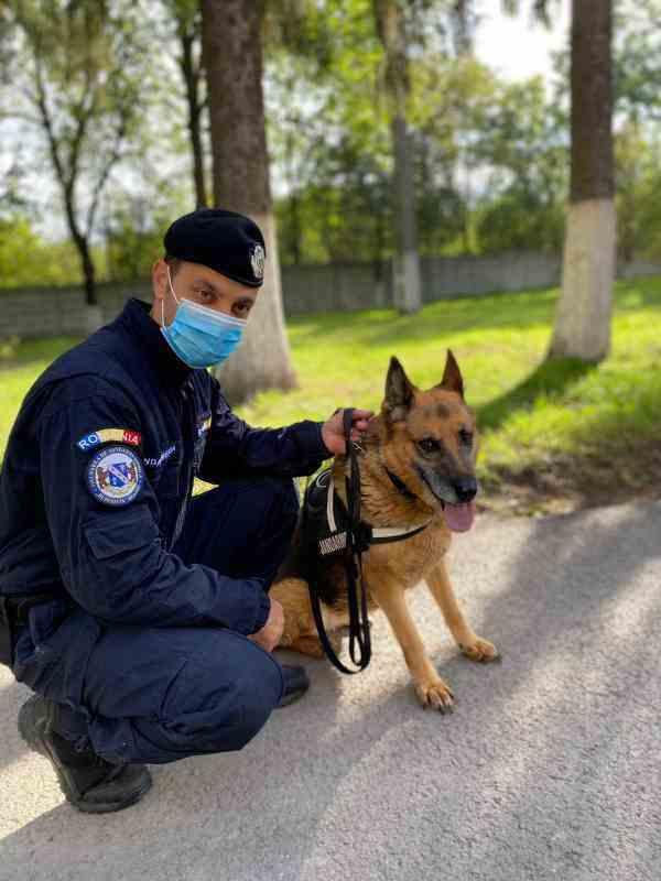 Pensionarea unui cățel - Moment emoționant la Gruparea de Jandarmi Mobilă Burebista Brașov