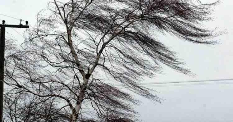 Informare ANM de vânt puternic, până luni la prânz