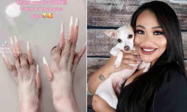 O femeie a devenit celebră pe internet după ce i-a pus unghii false cățelușei sale