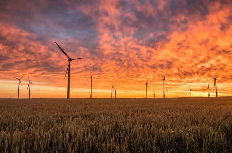 Când turbinele eoliene devin mai profitabile decât sondele de petrol
