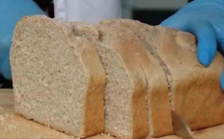 Studenţii de la Iaşi au copt prima pâine din făină de greier din România