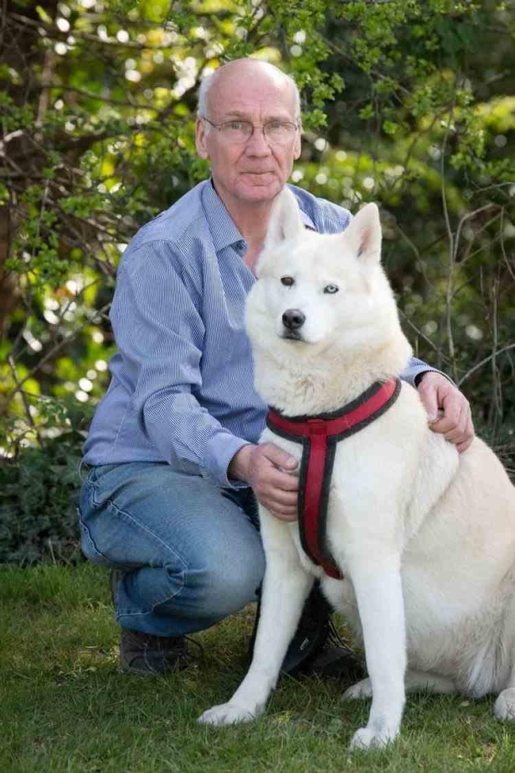Un câine şi-a alertat stăpânul după ce a descoperit un bebeluş abandonat