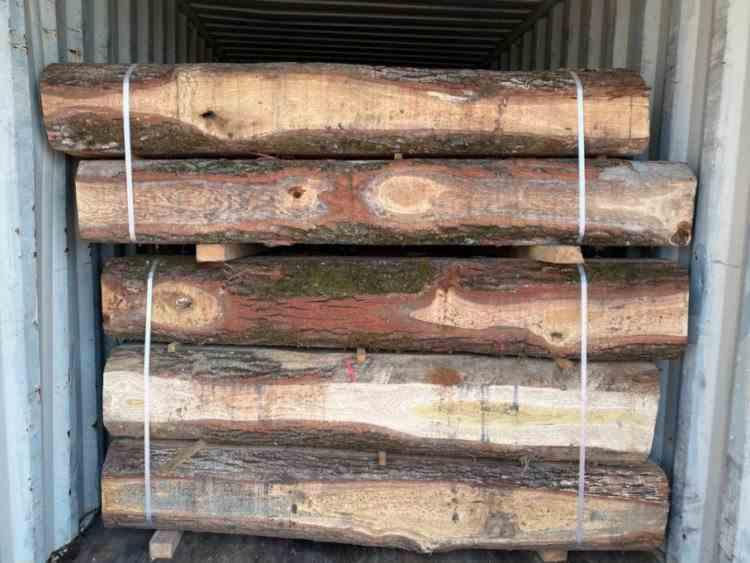 Zeci de bușteni, tăiați de pe 10 ha de pădure, au fost descoperiți în Portul Constanța - Containerele aveau China drept destinație