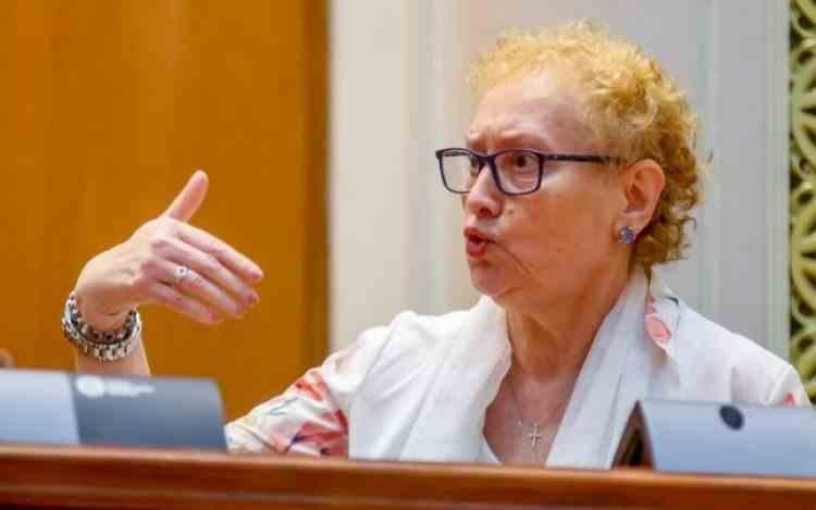 """Revocarea Renatei Weber din funcția de Avocat al Poporului a fost votată de Parlament - PSD: """"Este o execuție"""""""