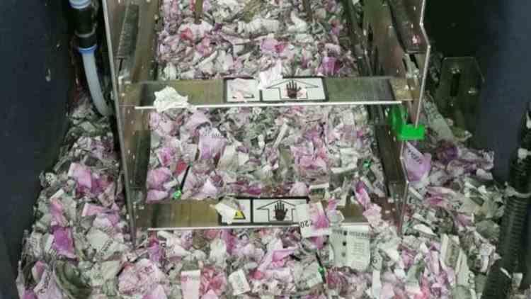 Un șobolan a ros toți banii dintr-un bancomat - Ce pagubă a putut să facă
